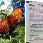 Poderoso Antibiotico Para El Moquillo En Gallos De Pelea