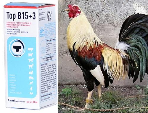 la vitamina topb15+3 en gallos de pelea